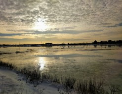 Seasons winter morning great marsh back of Good Harbor Beach Gloucester Mass_2017 November 8_©catherine Ryan