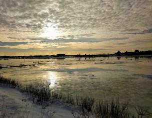 Seasons winter morning great marsh back of Good Harbor Beach Gloucester Mass_2017 November 8_©catherine Ryan