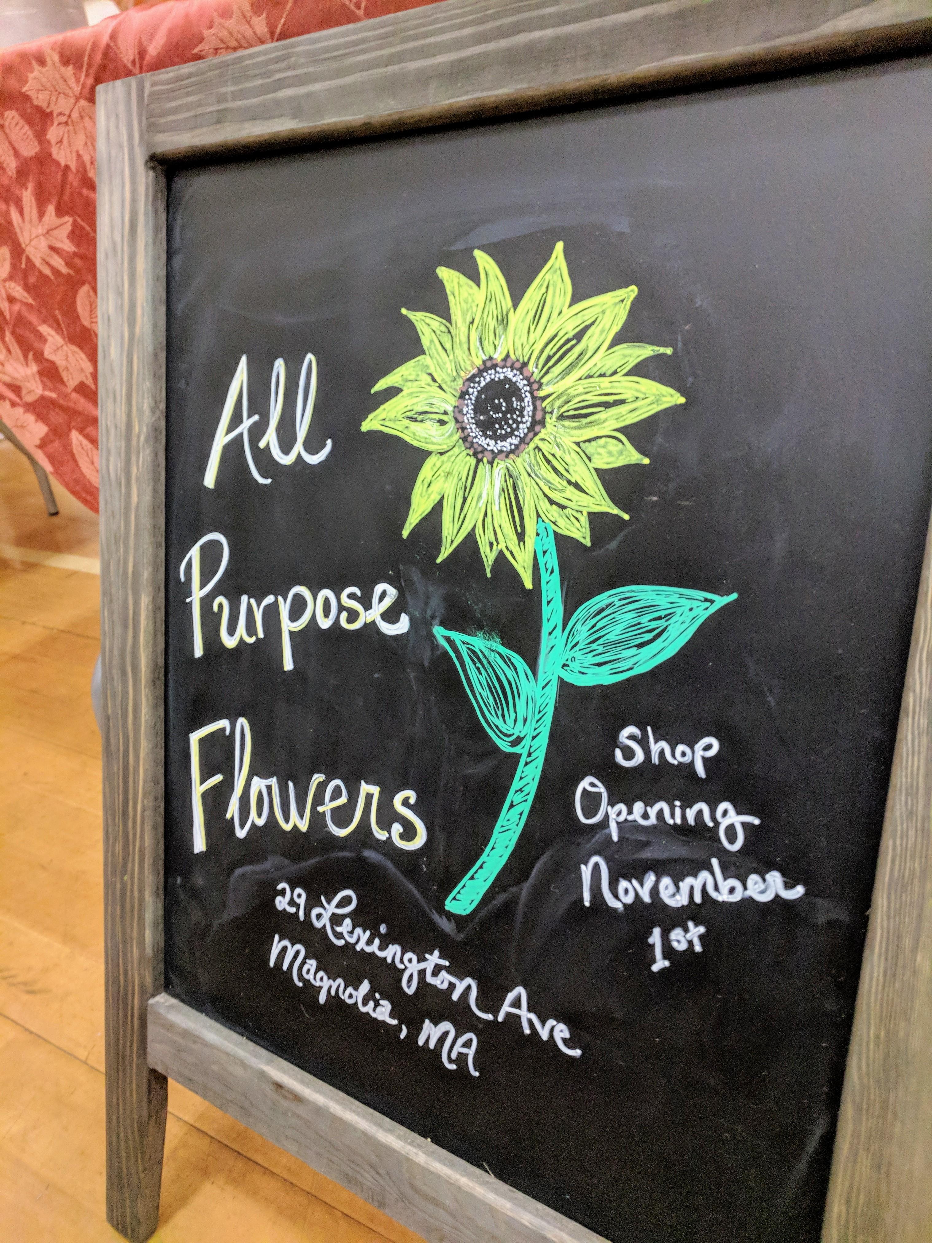 All Purpose Flowers coming to Magnolia November 1_20181012_©Catherine Ryan (2)