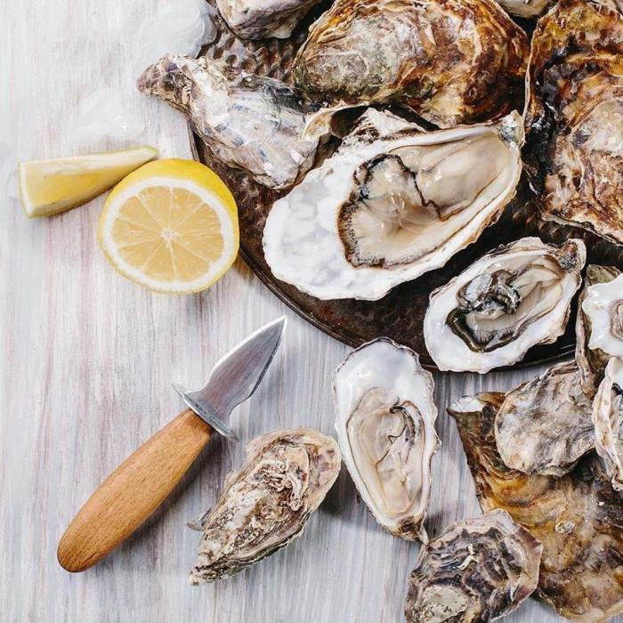 Oysters-one-dollar-feather-and-wedge-rockport-ma