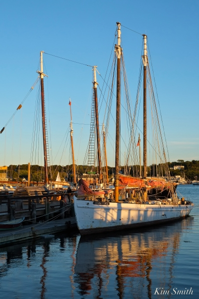 Schooner Sylvina W. Beal -11 copyright Kim Smith