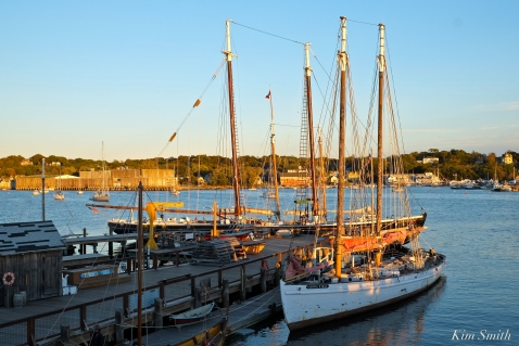 Schooner Sylvina W. Beal -17 copyright Kim Smith