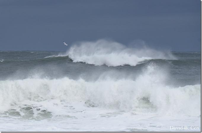 2018 11 16 #2 Backshore Surf 027