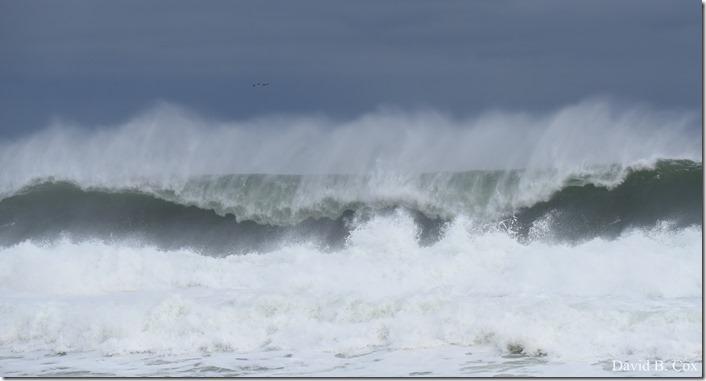 2018 11 16 #2 Backshore Surf 033