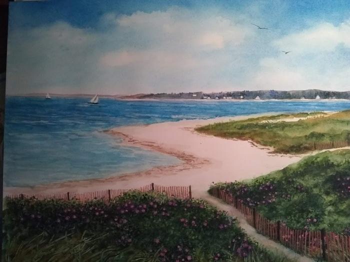 crane's beach (2).jpg