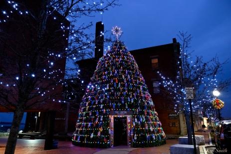 LOBSTER TRAP CHRISTMAS TREE GLOUCESTER MASSACHUSETTS COPYRIGHT KIM SMITH