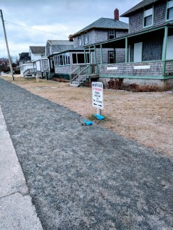 dog poop plastic bags litter_winter_20181216_©c ryan (1)