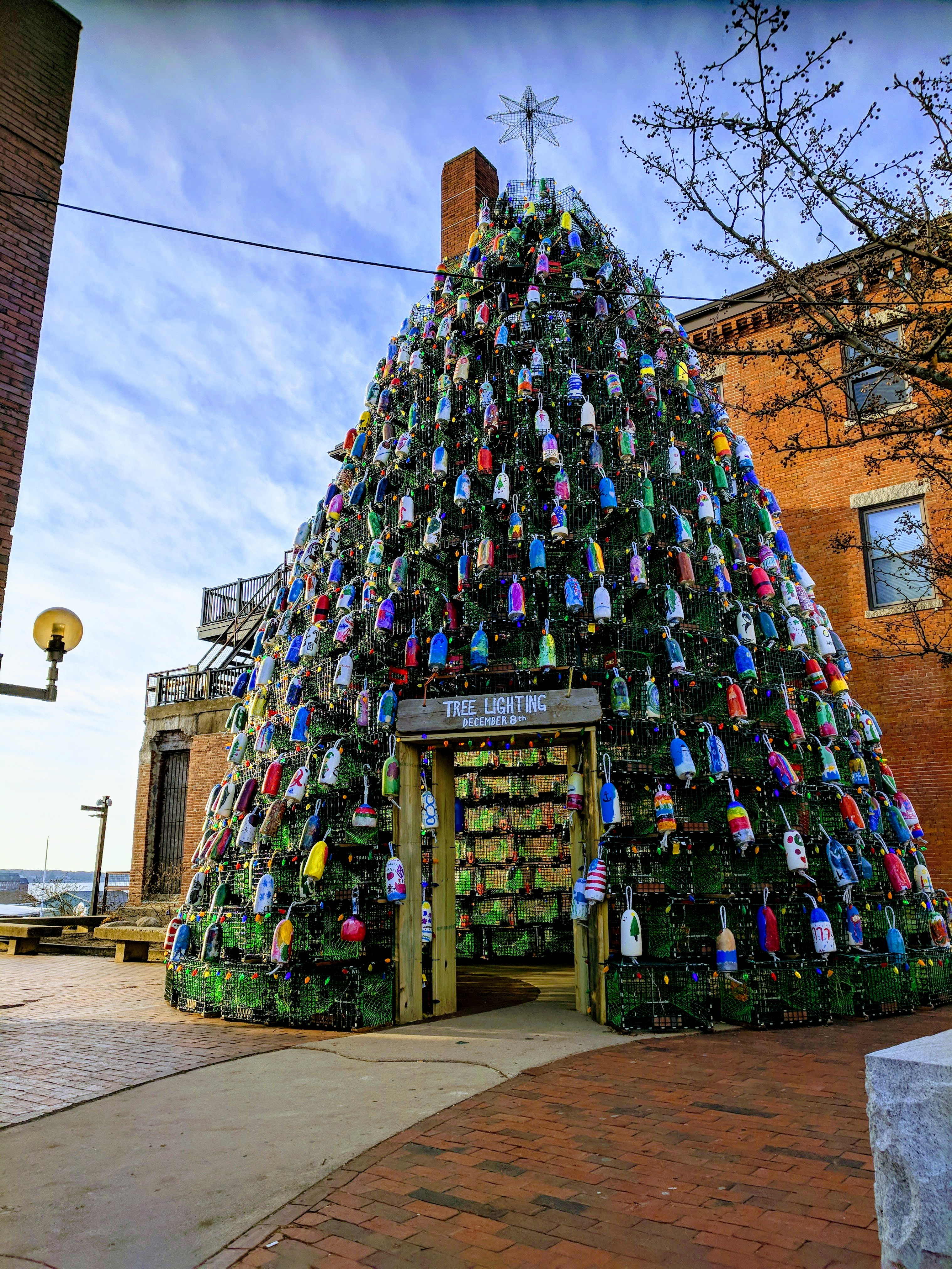 Gather round_lobster trap buoy tree morning light_Gloucester MA_vista to inner harbor from Main St_ 20181209_©c ryan