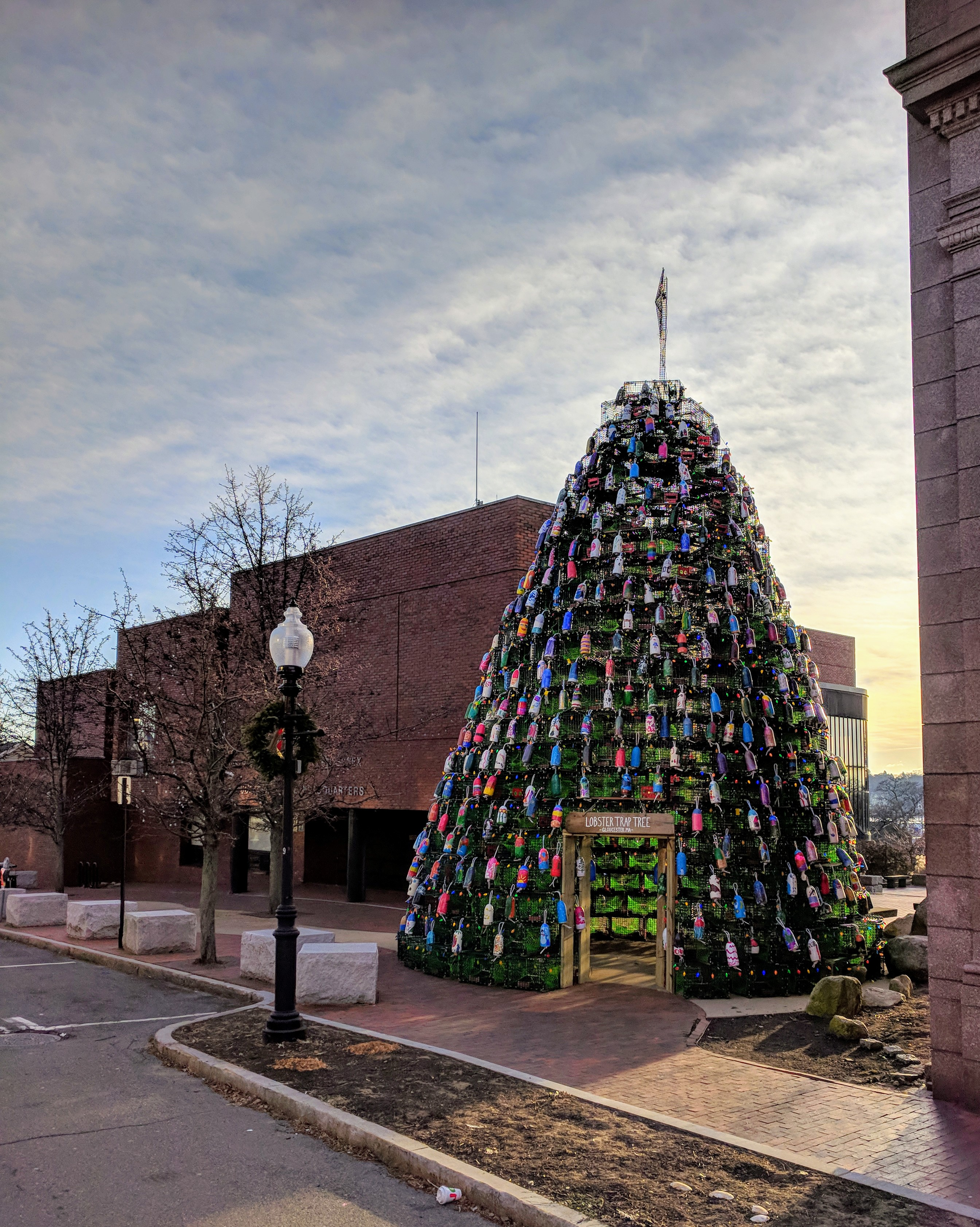 gather round_one Sunday morning lobster trap tree_Gloucester MA_ looking east end of Main Street downtown_20181209©c ryan