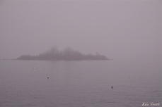 Ten Pound Island Fog Gloucester Massachusetts -2 copyright Kim Smith