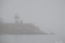Ten Pound Island Fog Gloucester Massachusetts copyright Kim Smith