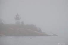 Ten Pound Island Fog Gloucester Massachusetts copyright Kim Smith