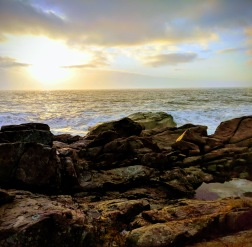 winter yellows sunrise_horizon coast_Gloucester MA_20181222_© c ryan