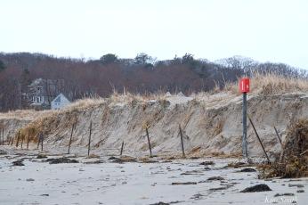 barrier-beach-erosion-gloucester-massachusetts-good-harbor-beach-5-copyright-kim-smith