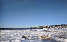 cherished summer tide pools after first winter storm wingaersheek beach gloucester mass_20190122_© catherine ryan