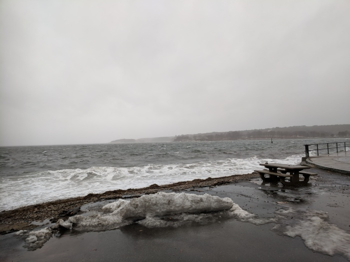 choppy harbor_20190124_© c ryan