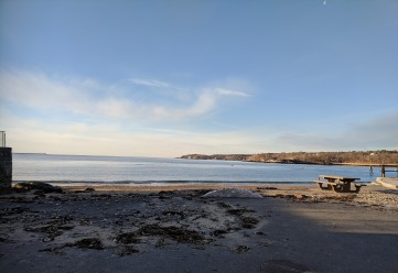 gloucester harbor view from edge of stacy boulevard_two days later washed up tide debris © catherine ryan_20190126