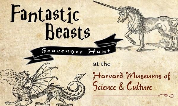 hmnh_fantasic_beasts_final