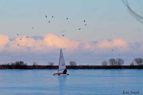 ice sailing niles pond january -3 copyright kim smith