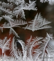 icecrystals_1441_edited-1