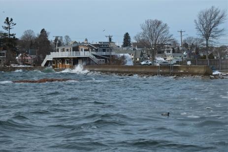 king tide high tide flat cove landing rocky neck gloucester massachusetts -2 copyright kim smith