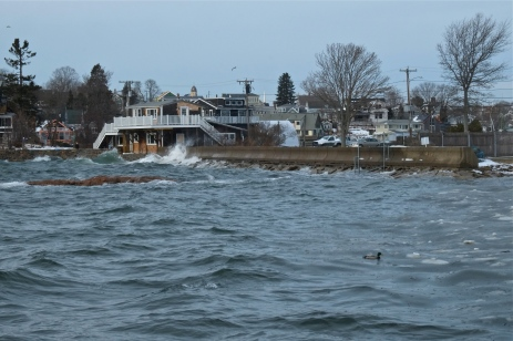 king tide high tide flat cove landing rocky neck gloucester massachusetts -2 copyright kim smith