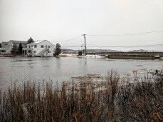 marsh bridge_ back of good harbor _thatcher road_gloucester ma_20190120_© catherine ryan_95750