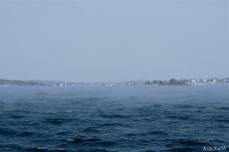 ten pound island sea smoke gloucester massachusetts winter storm 2019 copyright kim smith - 05