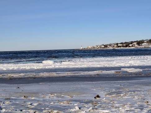 whites wingaersheek beach winter whites_20190122_after the first winter storm 2019 gloucester mass© catherine ryan