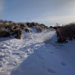 wingaersheek beach path_gloucester mass_20190122_© catherine ryan