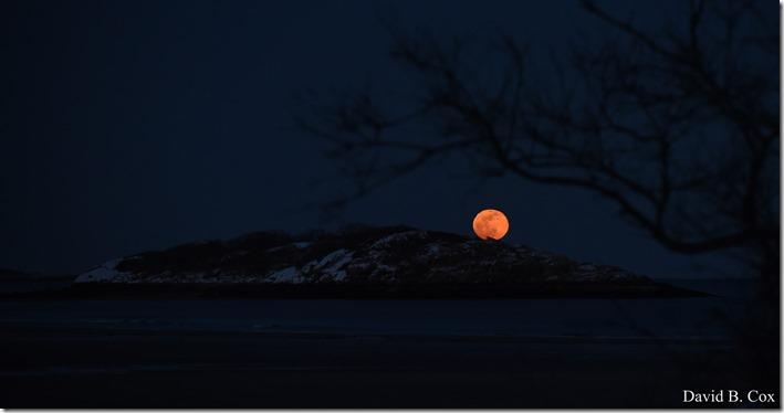 2019 02 19 Super Moon 010