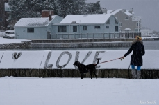 Brenda Malloy Rocky Neck One Love Gloucester MA -4 copyright Kim Smith