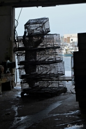 Stacking Lobster Traps Capt. Joes Gloucester MA -10 copyright Kim Smith