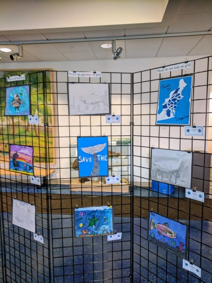2018 endangered species art contest 2018 NOAA headquarters Gloucester Mass_20180507_© catherine ryan (3)