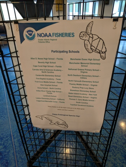 2018 endangered species art contest 2018 NOAA headquarters Gloucester Mass_20180507_© catherine ryan (8)