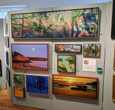 artist ken king panel_Cape Ann Through Artists' Eyes 2019 Manchester Historical Museum group show_20190306_©catherine ryan