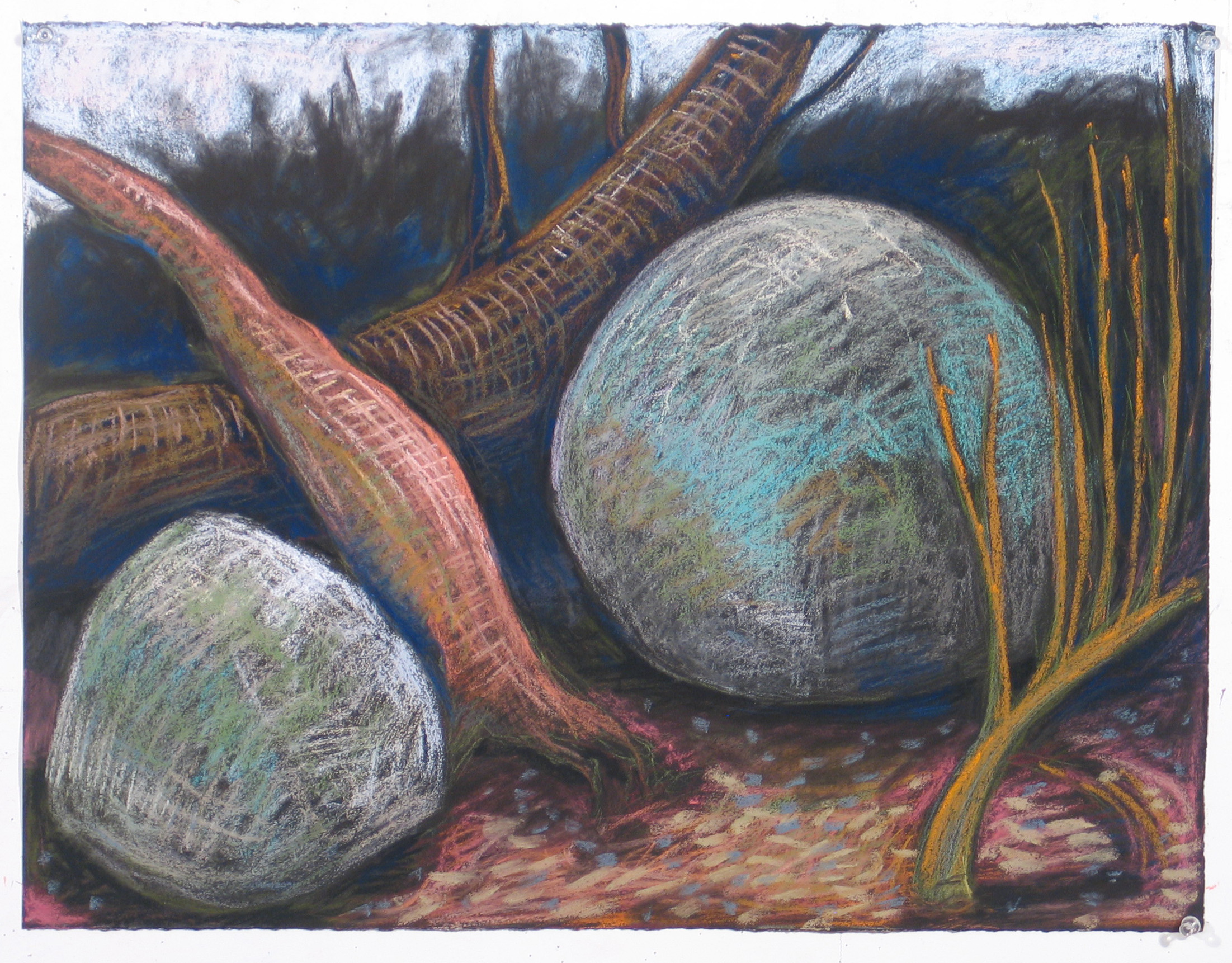 GBarzaghi . Rocks and Trees 2012 . Pastel on Stenhenge paper . 19x25 inches.JPG