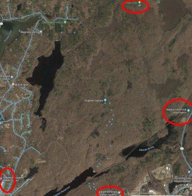 Dogtown detail google maps