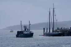 FV Grace Marie Gloucester Harbor-2 c Kim Smith
