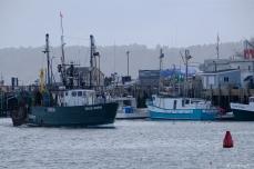 FV Grace Marie Gloucester Harbor-3 c Kim Smith