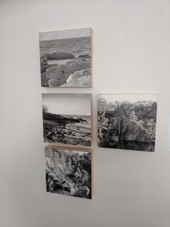 ADIN MURRAY_Jane Deering Gallery group exhibition contemporary landscape themes_20190518_© c ryan (5)