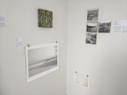 DEBORAH BROWN_ JACOB HESSLER_ADIN MURRAY_Jane Deering Gallery group exhibition contemporary landscape themes_20190518_© c ryan (1)