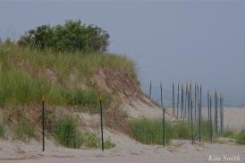 dune-fencing-good-harbor-beach-gloucester-2-copyright-kim-smith