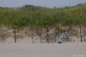 dune-fencing-good-harbor-beach-gloucester-copyright-kim-smith