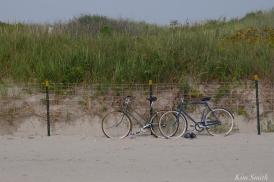 dune-fencing-good-harbor-beach-gloucester-copyright-kim-smith