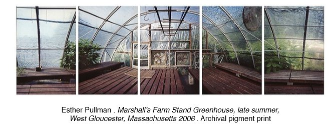 Esther Pullman . Marshall's Farm Stand Greenhouse, late summer, West Gloucester, Massachusetts 2006 . Archival pigment prin.jpg