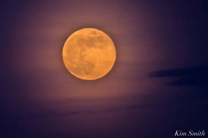 Full Flower Moon May Gloucester Massachusetts -16 copyright Kim Smith