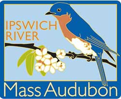 ipswich_river_wildlife_td_552