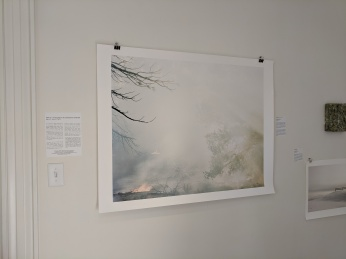 YOUNG SUH Jane Deering Gallery group exhibition contemporary landscape themes_20190518_© c ryan (4)