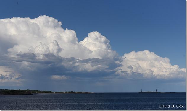 2019 6 22 Very Misc Egrets Beach Clouds etc 243